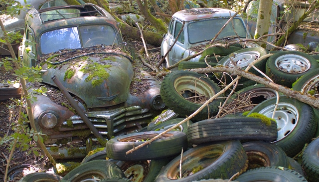 cash for cars, junk car buyer, money for a scrap car, price for a damaged car, salvage vehicle